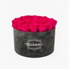 EXTRA LARGE BLUMMiN - hallist velvetist karp HOT PINK roosidega