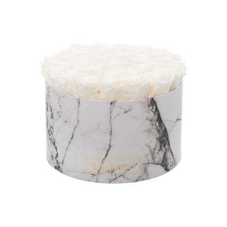 XL MARMOR KOLLEKTSIOON - valge karp WHITE uinuvate roosidega.jpg
