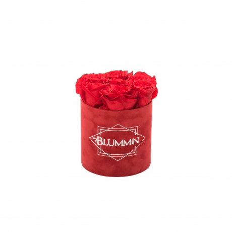 SMALL BLUMMiN - punane sametkarp VIBRANT RED uinuvate roosidega.jpg