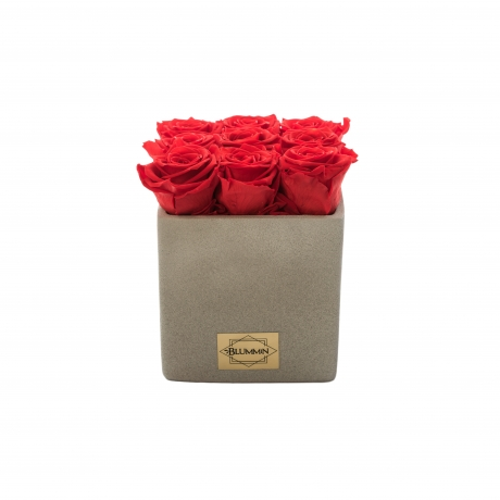 HELEhall keraamiline pott kauasäilivate roosidega.jpg