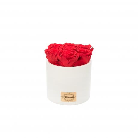 Valge keraamiline pott punaste magavate roosidega.jpg