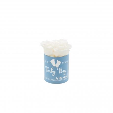 BABY BOY - sinine karp WHITE roosidega (3 roosiga).jpg