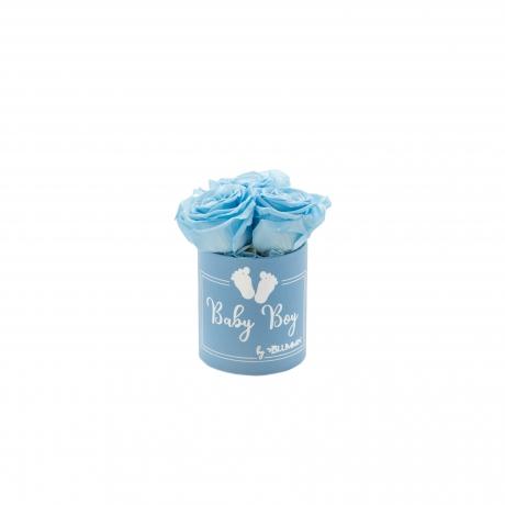 BABY BOY - sinine karp BABY BLUE roosidega (3 roosiga).jpg
