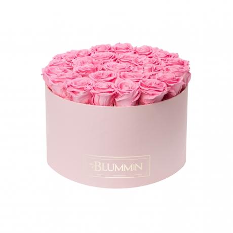 XL heleroosa karp BABY PINK stabiliseeritud roosidega.jpg