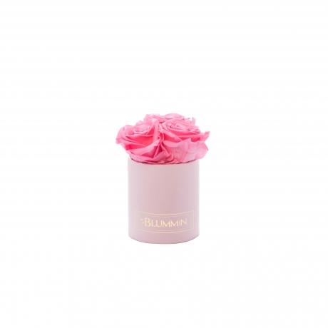 XS heleroosa karp BABY PINK magavad roosid.jpg