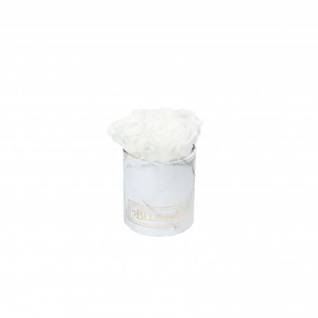 XS BLUMMiN - valge marmorkarp WHITE roosidega.jpg