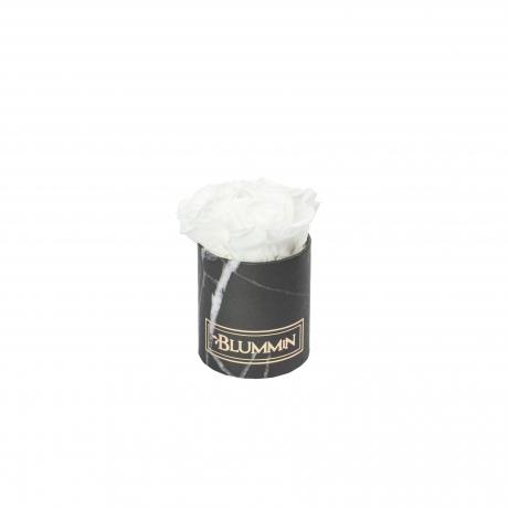 XS BLUMMiN - must marmorkarp WHITE roosidega.jpg