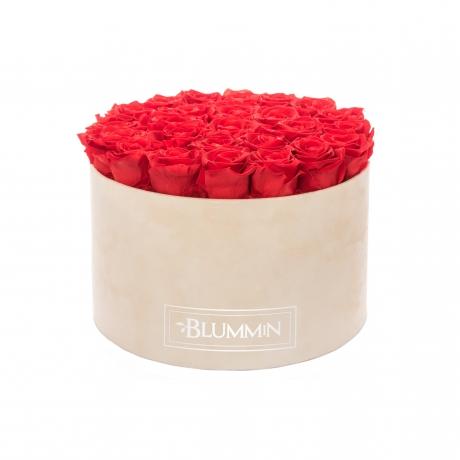 EXTRA LARGE BLUMMiN - nude sametkarp VIBRANT RED uinuvate roosidega.jpg