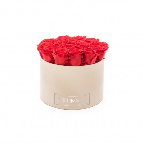 LARGE BLUMMiN - nude sametkarp VIBRANT RED uinuvate roosidega.jpg