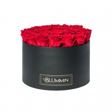 XL must karp VIBRANT RED magavate roosidega2.jpg
