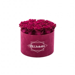LARGE BLUMMIN FUCHSIA VELVET BOX WITH CHERRY ROSES