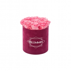 MEDIUM BLUMMIN FUCHSIA VELVET BOX WITH BABY PINK ROSES