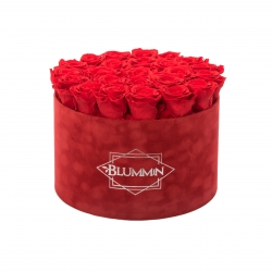 EXTRA LARGE RED VELVET BOX WITH  VIBRANT RED ROSES
