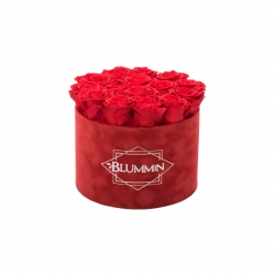 LARGE RED VELVET BOX WITH VIBRANT RED ROSES