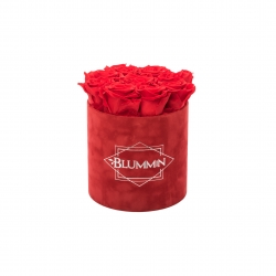 MEDIUM  RED VELVET BOX WITH VIBRANT RED ROSES