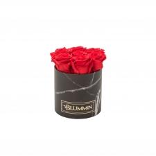 SMALL MARMOR KOLLEKTSIOON - must karp VIBRANT RED uinuvate roosidega