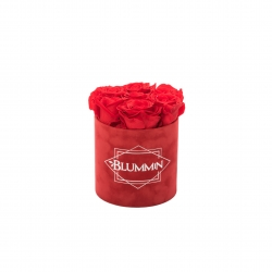 SMALL RED VELVET BOX WITH VIBRANT RED ROSES