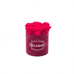 SMALL FUCHSIA VELVET BOX WITH HOT PINK ROSES