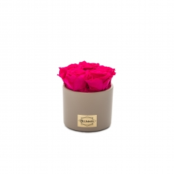 BEIGE CERAMIC POT WITH 5 HOT PINK ROSES