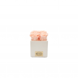 WHITE CERAMIC POT WITH 4 SWEET PINK ROSES