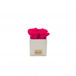 WHITE CERAMIC POT WITH 4 HOT PINK ROSES
