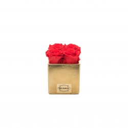 GOLDEN CERAMIC POT WITH 4 VIBRANT RED ROSES