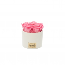 WHITE CERAMIC POT WITH 5 BABY PINK ROSES
