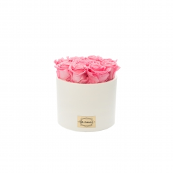 WHITE CERAMIC POT WITH 9 BABY PINK ROSES