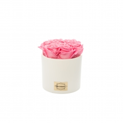 WHITE CERAMIC POT WITH 7 BABY PINK ROSES