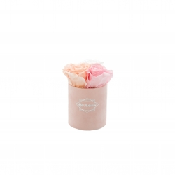 XS BLUMMiN - LIGHT PINK VELVET BOX WITH MIX ROSES