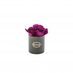 XS BLUMMIN DARK GREY BOX WITH PLUM ROSES