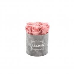 SMALL VELVET LIGHT GREY BOX WITH VINTAGE PINK ROSES