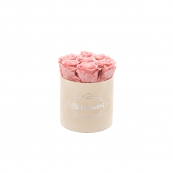 SMALL BLUMMiN - NUDE VELVET BOX WITH VINTAGE PINK ROSES