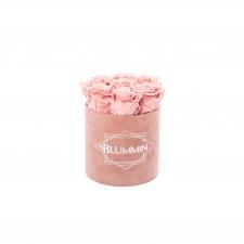 SMALL BLUMMiN - VANAROOSA sametkarp VINTAGE PINK roosidega