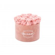 LARGE BLUMMIN OLD PINK VELVET BOX WITH VINTAGE PINK ROSES
