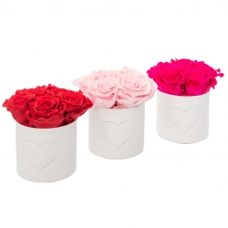 WHITE CERAMIC POT WITH HEARTS WITH 5 ROSES