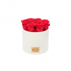 BEIGE CERAMIC POT WITH 9 HOT PINK ROSES