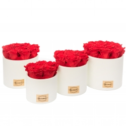 WHITE CERAMIC POT WITH VIBRANT RED ROSES
