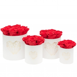 LOVE WHITE VELVET BOX WITH VIBRANT RED ROSES
