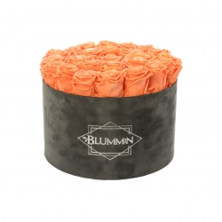 EXTRA LARGE DARK GREY BOX WITH SALMON ROSES