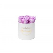 SMALL BLUMMiN - valge karp BABY LILLY roosidega