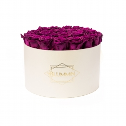 EXTRA LARGE CLASSIC CREAM BOX WITH VINTAGE PLUM ROSES