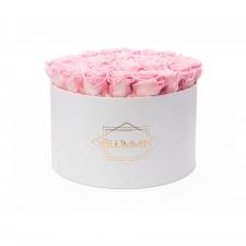 EXTRA LARGE BLUMMiN - valge karp BRIDAL PINK roosidega