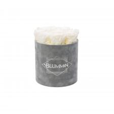 MEDIUM BLUMMiN - helehall sametkarp WHITE roosidega