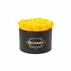 LARGE BLUMMIN - BLACK BOX WITH YELLOW ROSES