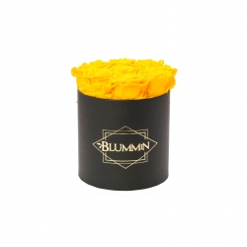 MEDIUM BLUMMiN - must karp SUNNY YELLOW roosidega