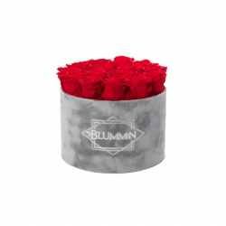 LARGE VELVET LIGHT GREY BOX WITH VIBRANT RED ROSES