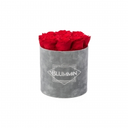 MEDIUM BLUMMIN LIGHT GREY VELVET BOX WITH VIBRANT RED ROSES
