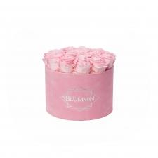 LARGE BLUMMiN - roosa  sametkarp BRIDAL PINK roosidega