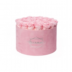 EXTRA LARGE LIGHT PINK VELVET BOX WITH  BRIDAL PINK ROSES